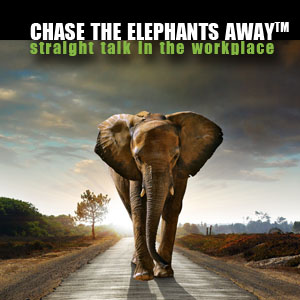 Workshop-ChaseAwaythe Elephants2